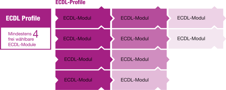 ECDL-Profile.png